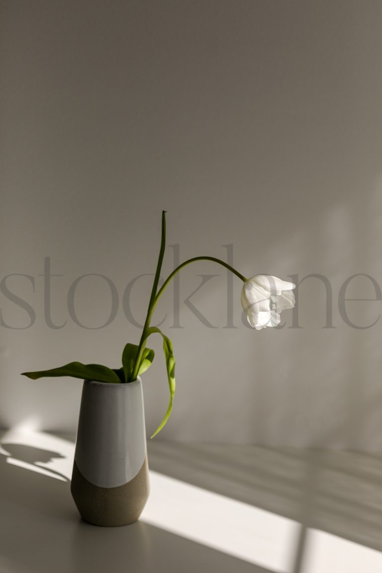 Vertical stock photo of flower and vase