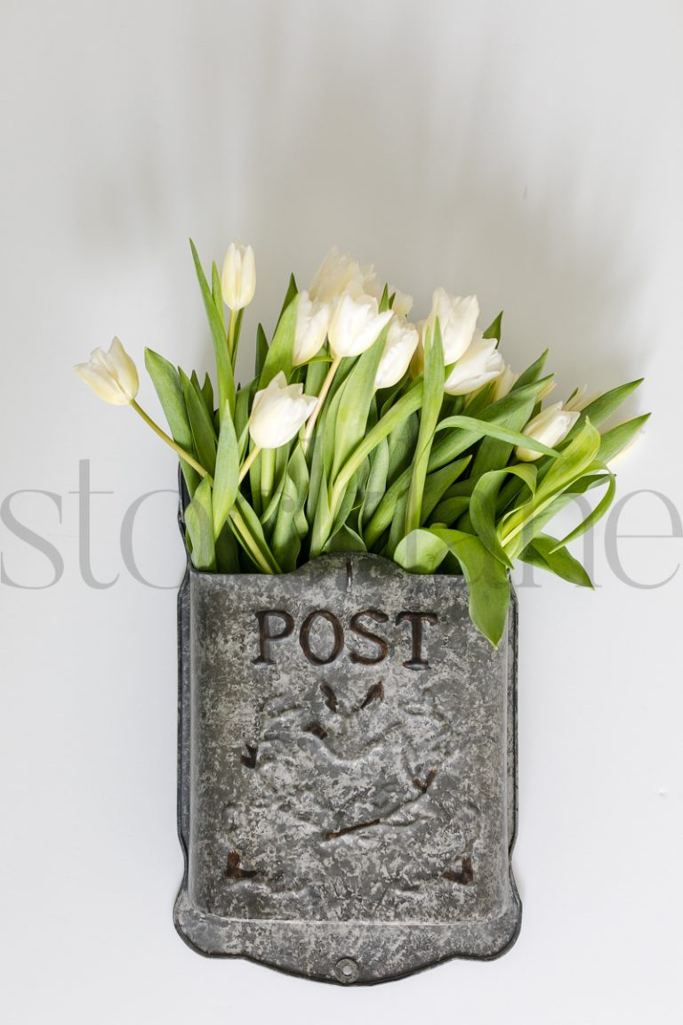 Vertical stock photo of flowers in mailbox