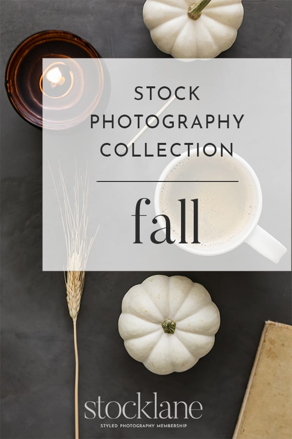 Fall photo sample from Stocklane.co