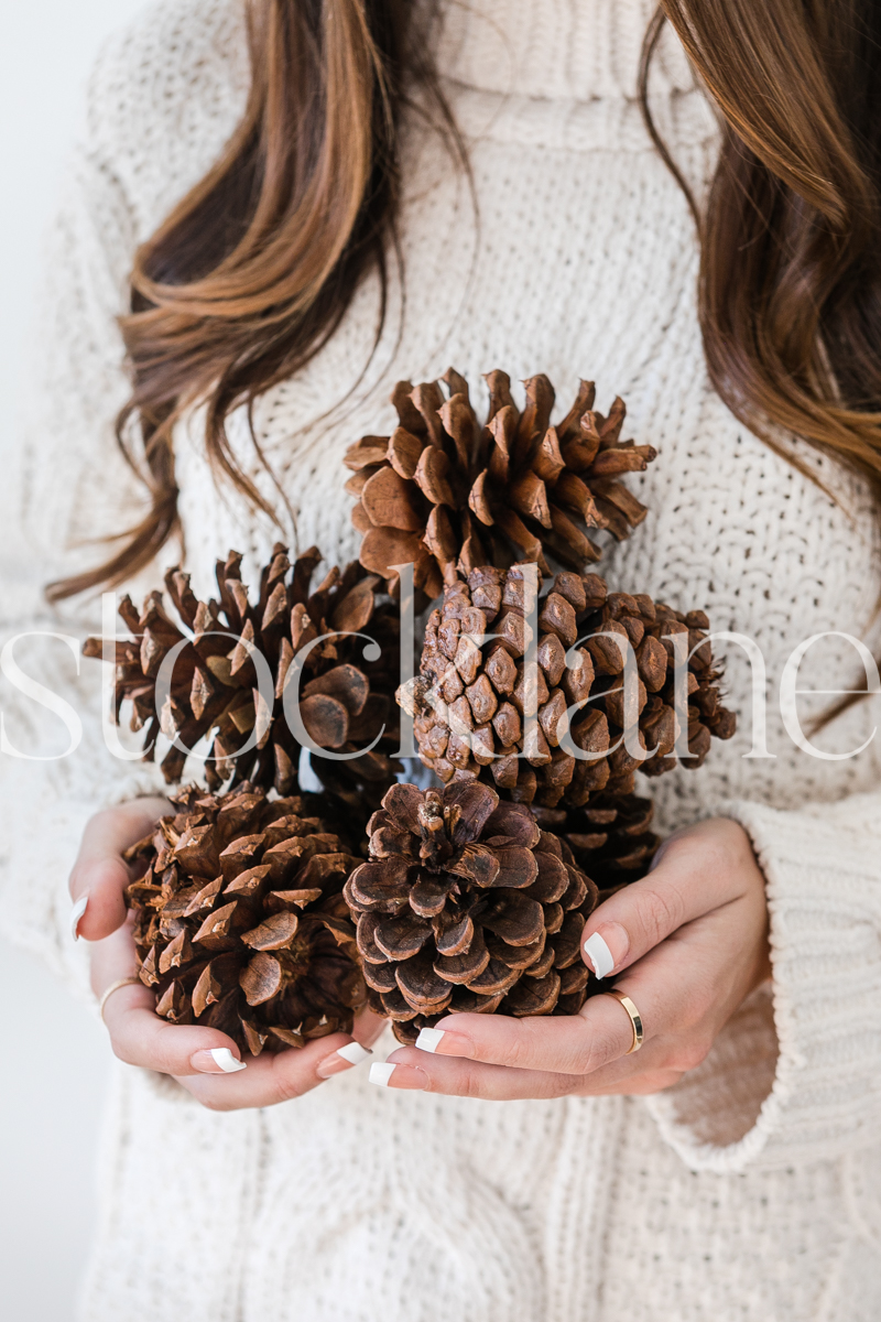 Vertical stock photo of woman holding pine cones