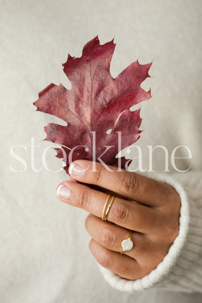 Vertical stock photo of a woman holding a leaf.