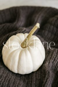 Vertical stock photo of a white pumpkin on a brown blanket.