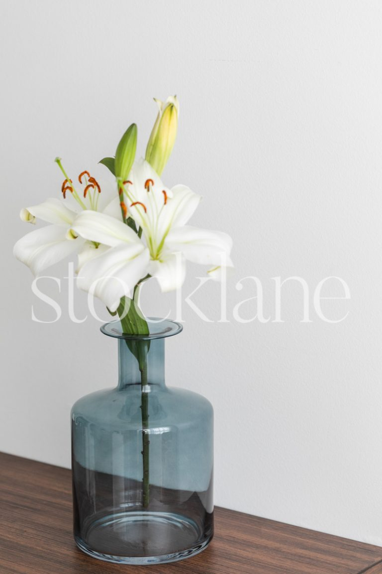 Vertical stock photo of a blue vase with white asian lilies.