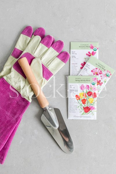 Vertical stock photo of gardening gloves, seeds and gardening tools.