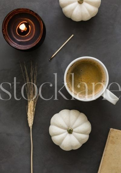 Fall and Thanksgiving photos by Stocklane.co